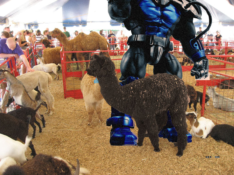 Apocalypse At The Petting Zoo